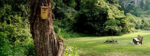 Tucker Nature Preserve